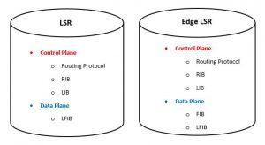 Understanding MPLS Basics